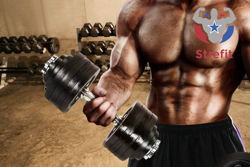 Why Strefit Like The Yes4all Adjustable Dumbbells