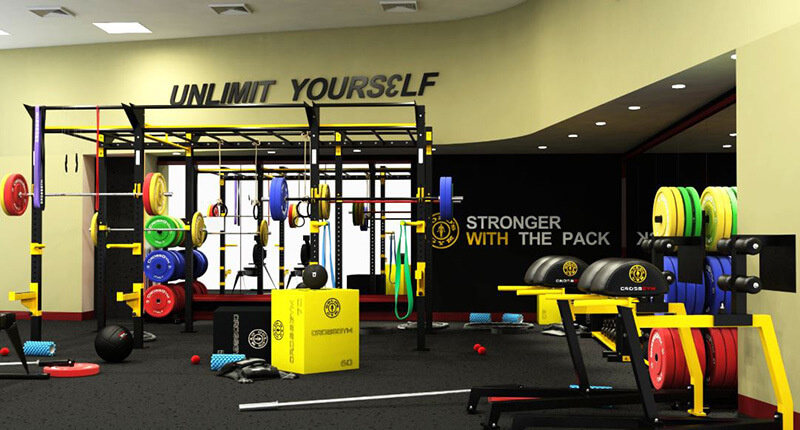 golds gym excercise equipment