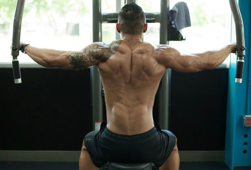 The Ultimate Rear Deltoid Workout