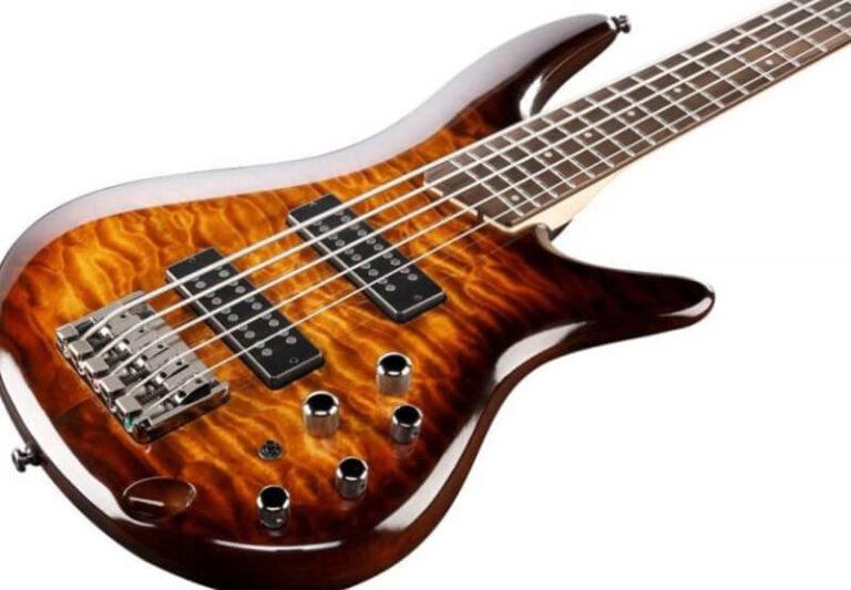 Top 14 Best 5 String Bass Under 1000 Dollars