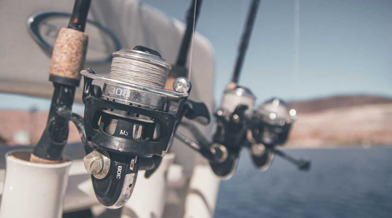 Considerations When Purchasing a Budget Fly Fishing Reel