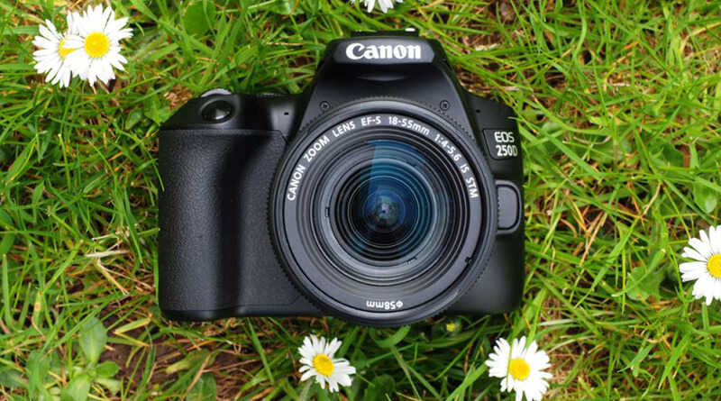 FAQs Best DSLR Camera Under 200
