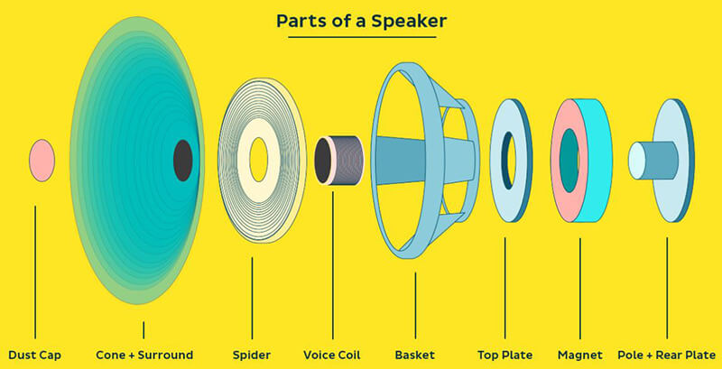 How A Speaker Work Into Sound
