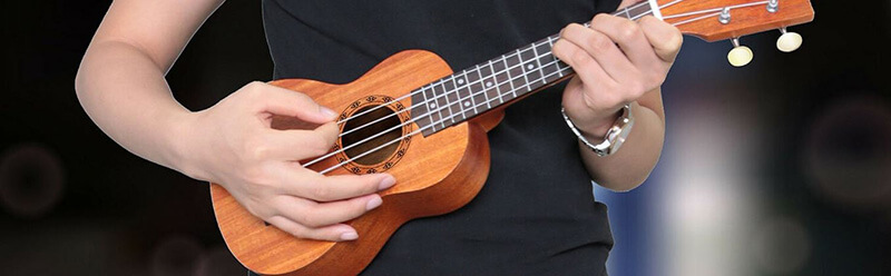Top 101 Best Concert Ukulele Under 200