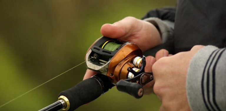 Top 101 Best Fly Fishing Combo Under 200